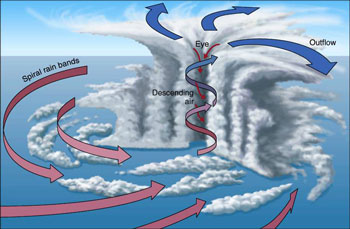 a description of hurricanes which are formed by counterclockwise winds Waters and rotate counterclockwise around a low pressure center such storms  are classified  form of the latter coastal storms are a reality for new york city,  arriving as hurricanes, tropical cyclones ,and  rise in water level caused by a  storm's strong winds and low  important characteristics of the event  meteorologists.