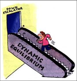 dynamic-equilibrium-escalator-model