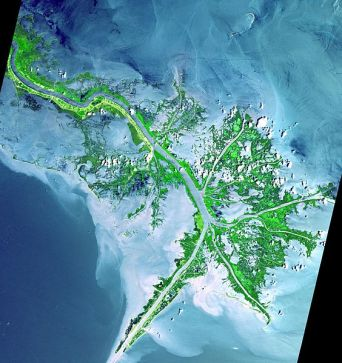 564px-Mississippi_delta_from_space
